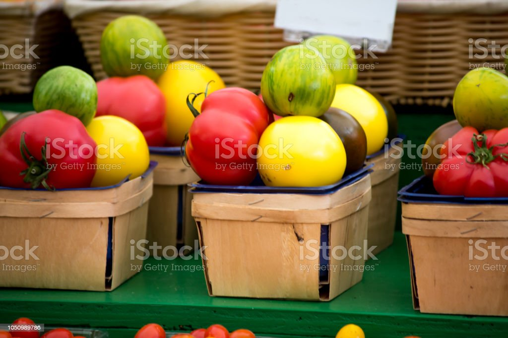 Heirloom tomatoes in different colors in a row in baskets  colorful healthy organic vegetable background stock photo