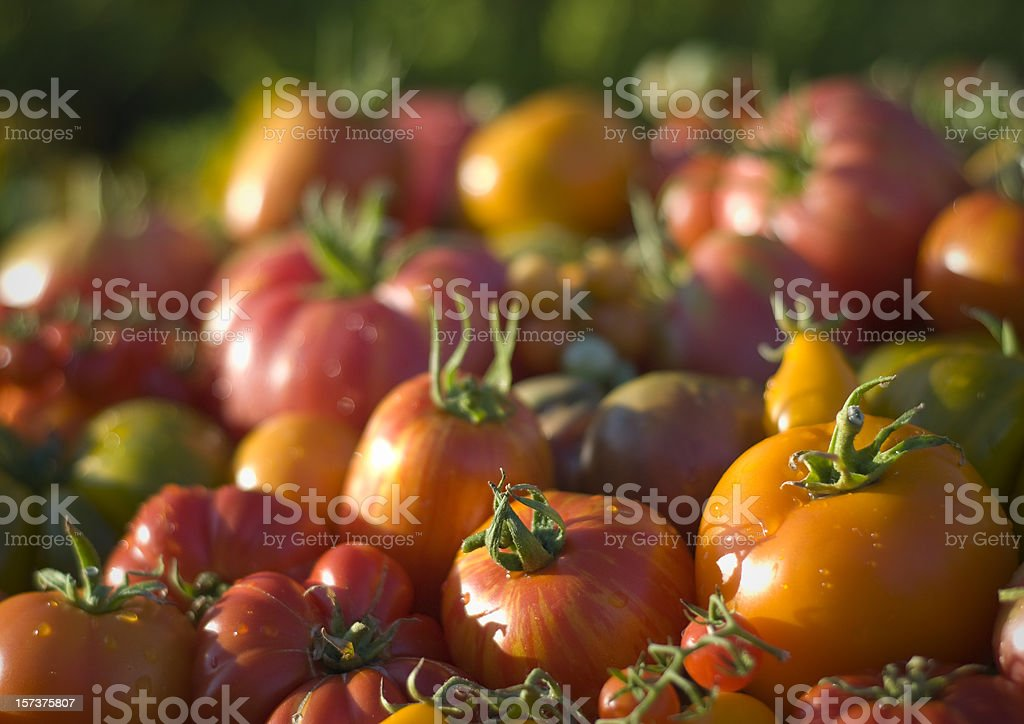 Heirloom Tomatoes Vegetables Background, Organic Produce at Farmer's Market royalty-free stock photo