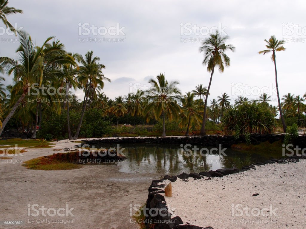 Heleipalala - Springwater and saltwater pond held fish to be eaten by the Royalty stock photo