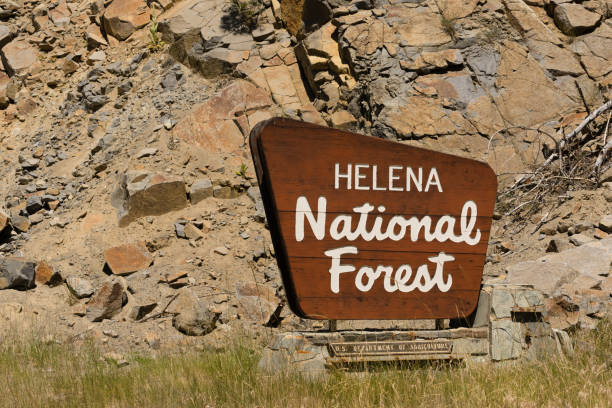 Helena National Forest Sign US Department of Agriculture Sign that announces the entrance to Helena National Forest national forest stock pictures, royalty-free photos & images