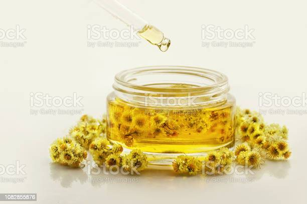 Photo of Helichrysum (Immortelle) Essential Oil