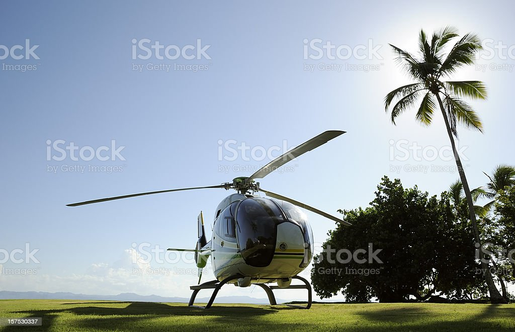 Helicopter and palm tree stock photo