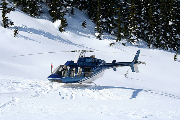 Helicopter at Heli Skiing Landing stock photo