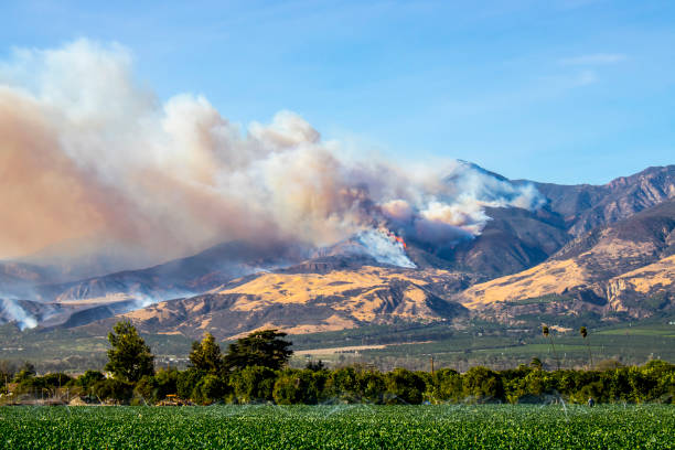 helikopters strijd wildvuur in hills in californië - bosbrand stockfoto's en -beelden