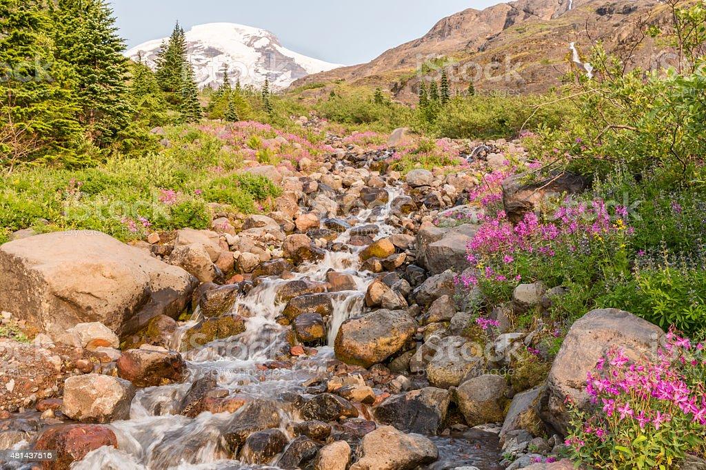 Heliptrope Creek and Mt. Baker stock photo