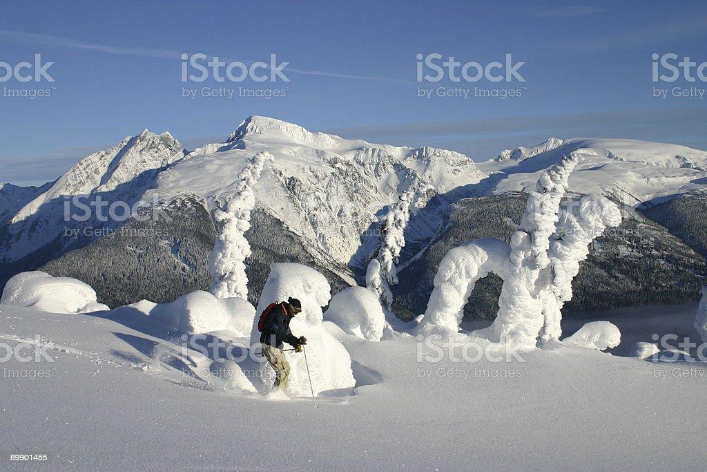 Heli-Skiing 7 royalty-free stock photo
