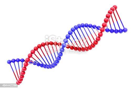 525225194 istock photo DNA helix 3d model 494442266