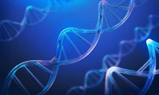 hélice del adn, molécula o átomo, estructura abstracta para la ciencia. - adn fotografías e imágenes de stock