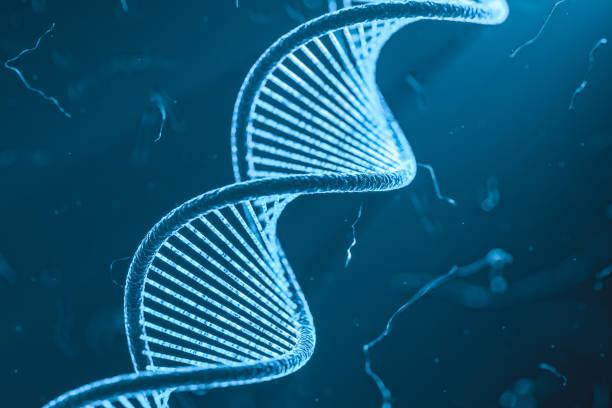 DNA-Helix mit Partikeln und Chromosomes wissenschaftlicher blauer Hintergrund – Foto