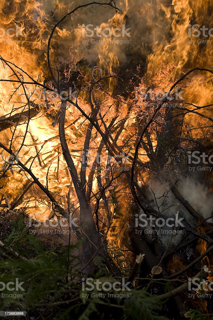 Inferno royalty-free stock photo