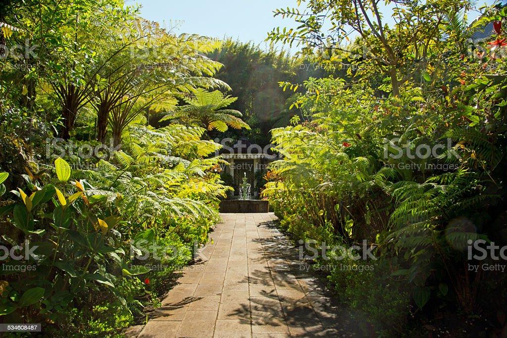 Hell Bourg, Maison Folio, Reunion   Tropical Garden Royalty Free Stock Photo