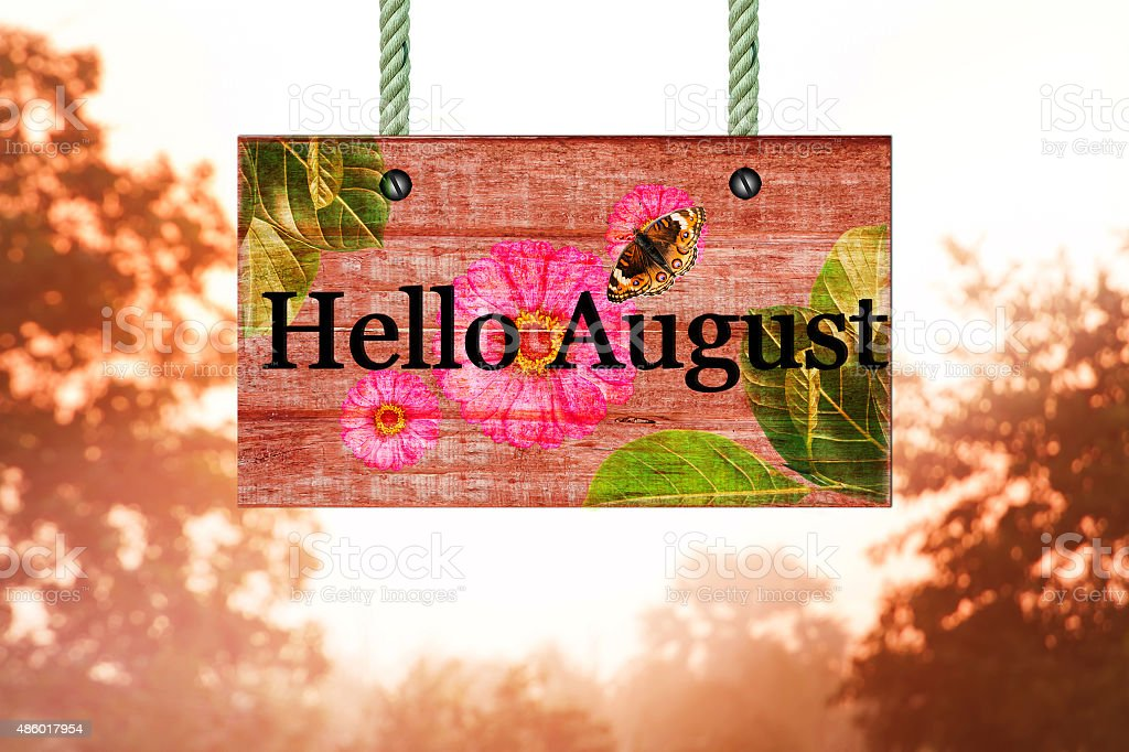 Hello August Signpost In Beautiful Woodland With Vintage Forest  Royalty Free Stock Photo