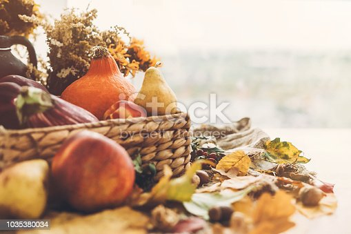 Hello Autumn. Pumpkin and vegetables in basket and colorful leaves with acorns and nuts on wooden table in sunny light. Bright Fall image. Harvest time. Happy Thanksgiving