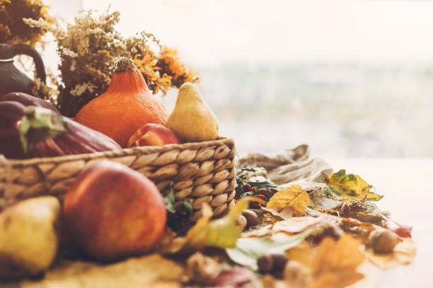 witam jesień. dynia i warzywa w koszu i kolorowe liście z żołędziami i orzechami na drewnianym stole w słonecznym świetle. jasny obraz upadku. czas zbiorów. szczęśliwego święta dziękczynienia - zbierać plony zdjęcia i obrazy z banku zdjęć