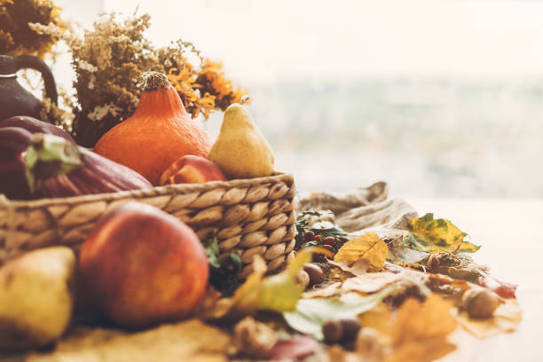 hello autumn. pumpkin and vegetables in basket and colorful leaves with acorns and nuts on wooden table in sunny light. bright fall image. harvest time. happy thanksgiving - thanksgiving стоковые фото и изображения