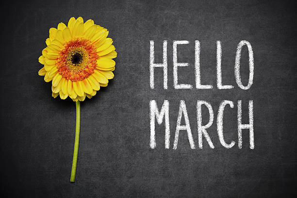 Hello March Gerbera and text ,,Hello March