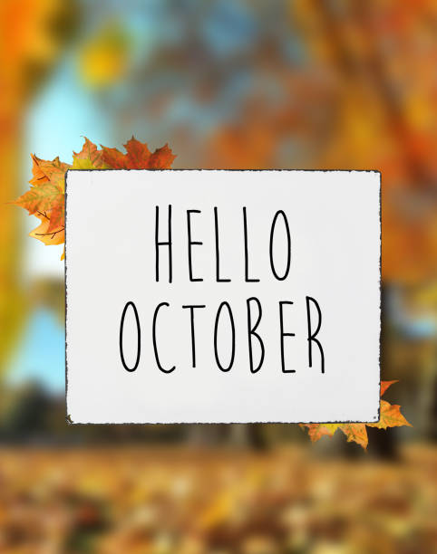 Hello October autumn fall colors text on white plate board banner fall leaves blur background stock photo