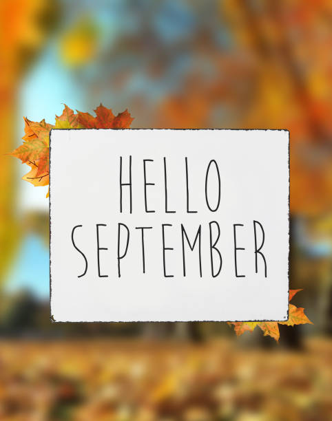 Hello September autumn text on white plate board banner fall leaves blur background stock photo