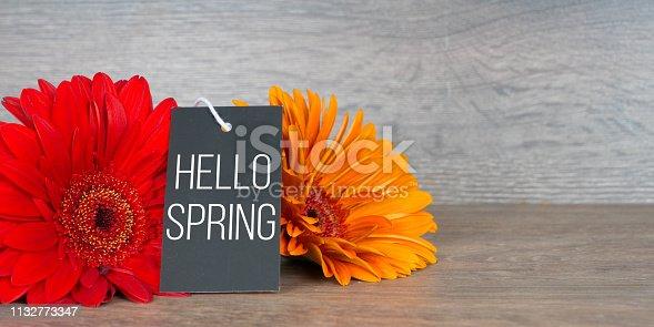 istock hello spring, greetings card with gerbera flowers 1132773347