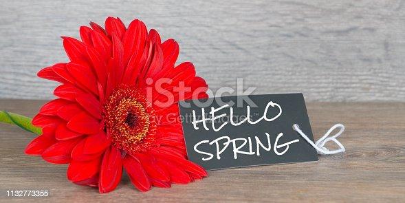 istock hello spring, greetings card with gerbera flowers 1132773355