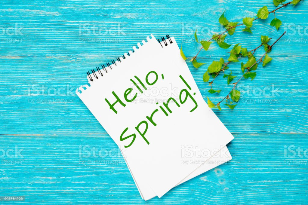 hello spring, message with fresh spring birch branches stock photo