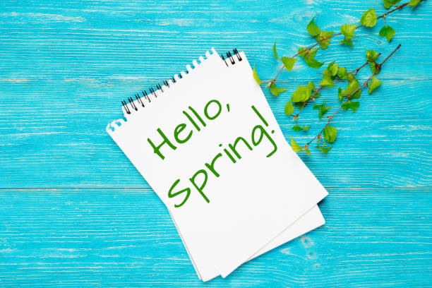 hello spring, message with fresh spring birch branches - welcome march stock photos and pictures