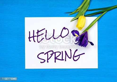 istock hello spring text and tulip and iris, blue paper background 1132773360