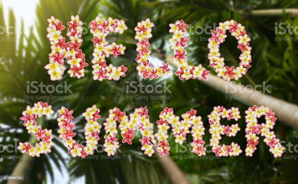 Hola título de verano - foto de stock