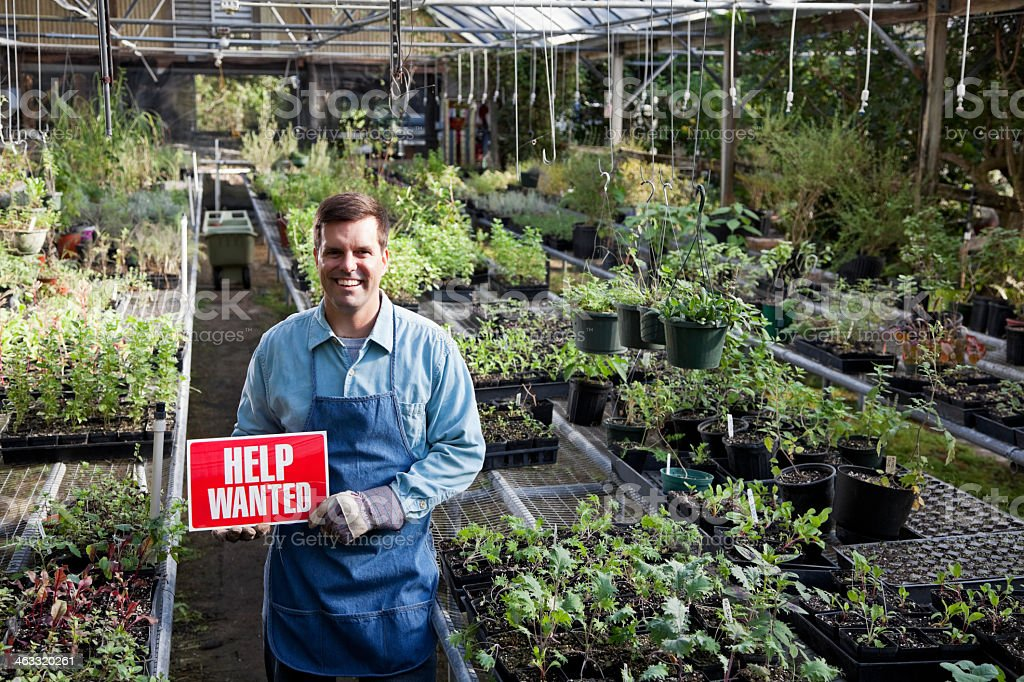 Mid adult man in plant nursery holding HELP WANTED sign.