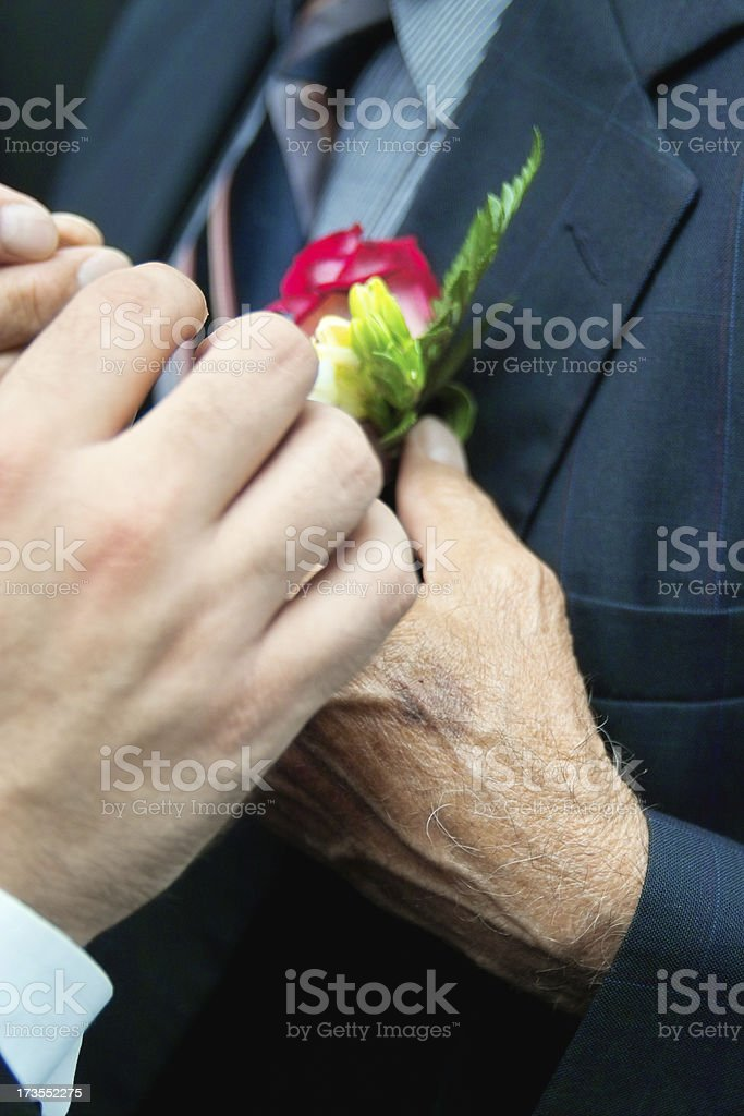 Helping Hands royalty-free stock photo