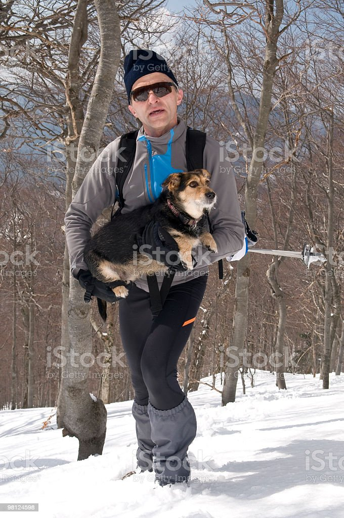 Helping His Little Dog royalty-free stock photo