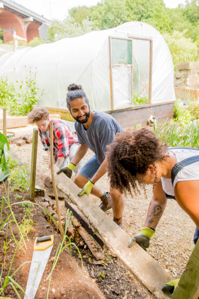 Helping Out at the Farm A small group of people help out in the community garden at the local farm. community garden stock pictures, royalty-free photos & images