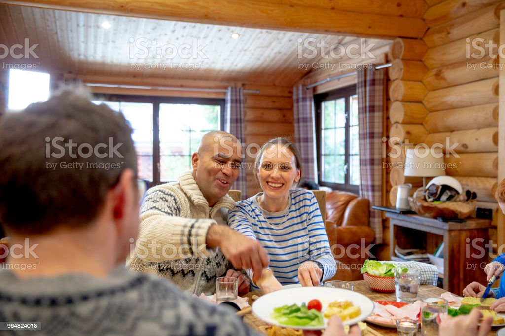 Helping Themselves to Dinner royalty-free stock photo