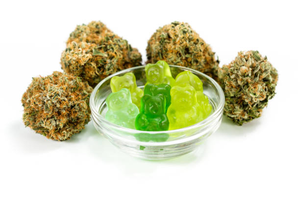 Hemp Gummies clear bowl filled with gummy bears and marijuana buds around isolated on a white background thc stock pictures, royalty-free photos & images