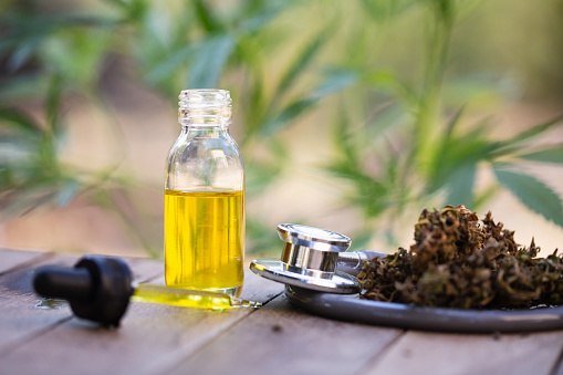 1134024584 istock photo Hemp oil, Medical marijuana products including cannabis leaf, dried bud, cbd  and hash oil over black wood background 1134024598