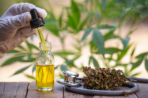 1134024584 istock photo Hemp oil, Medical marijuana products including cannabis leaf, dried bud, cbd  and hash oil over black wood background 1134024607