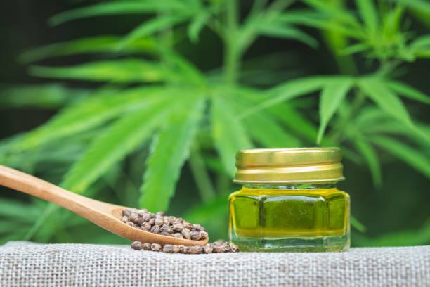 cbd hanföl produkte, cannabisöl gegen marihuana-pflanze. pflanzliche behandlung, alternative medizin - matheblatt etiketten stock-fotos und bilder