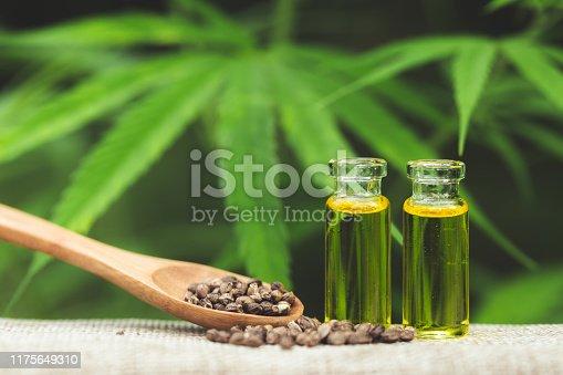 istock Hemp seeds and  droplet dosing a biological and ecological hemp plant herbal pharmaceutical cbd oil from a jar on a green marijuana leaf background.  medical marijuana concept, CBD cannabis OIL. 1175649310