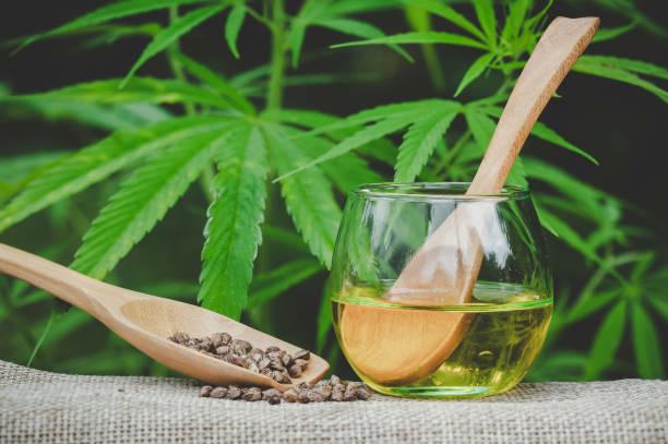 hanfsamen und hanföl in einem glas auf einem grünen marihuana-blatt-hintergrund. medizinisches marihuana-konzept, cbd cannabis oil. - matheblatt etiketten stock-fotos und bilder