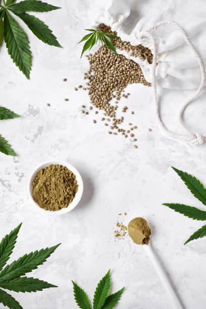 Hemp seeds and hemp protein powder on white background around cannabis leaves flat lay. Best for began diet stock photo
