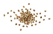 Hemp seeds isolated on white background with clipping path, heap of cannabis seeds, close up, top view