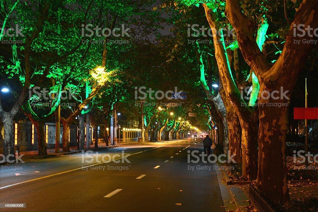Hengshan road in Xujiahui district by night, Shanghai China stock photo