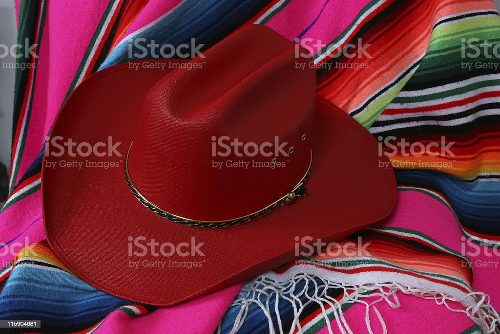 Her Red Hat royalty-free stock photo