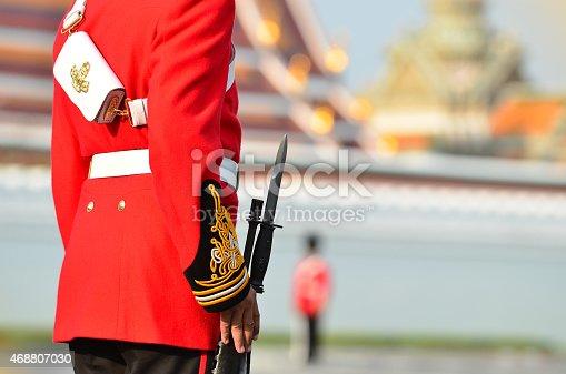 istock Her Royal Highness Princess Bejaratana 468807030