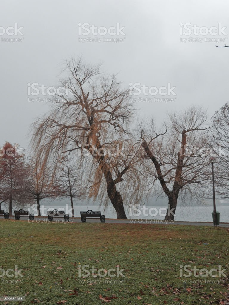 Herastrau Park in Bucharest, on a rainy day stock photo