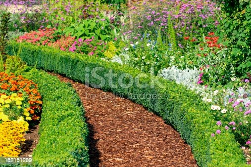 Footpath in the herb and flower garden