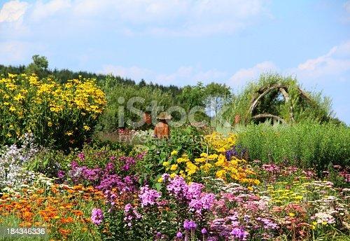 Wonderful herb and flower garden
