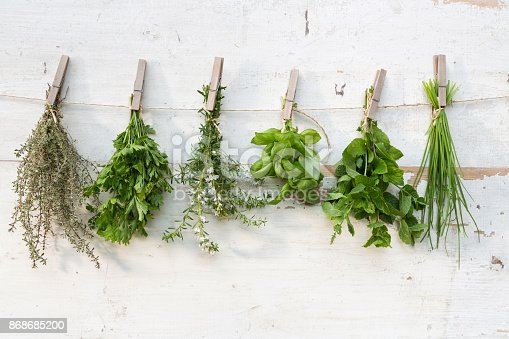 Herb bunches hanging against old wooden fence.