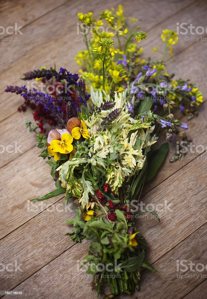 Herb Flowers royalty-free stock photo