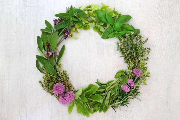 Herb Leaf Wreath stock photo